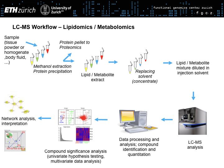 LC-MS bases metabolite/lipid analysis – Functional Genomics
